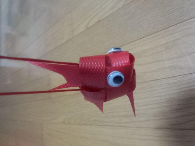 台湾の金魚